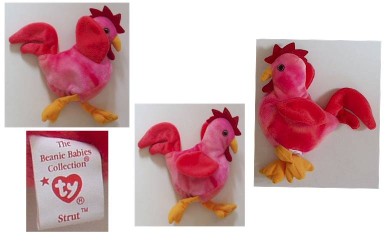 Strut The Rooster - Click for more photos cfc0b48555f